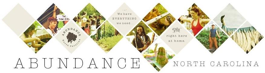 Abundance Foundation-w