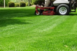Hubbard Landscaping & Lawn Care